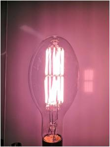 Graphene Grow Light Bulb