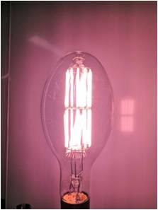 Graphene Grow Light Bulb